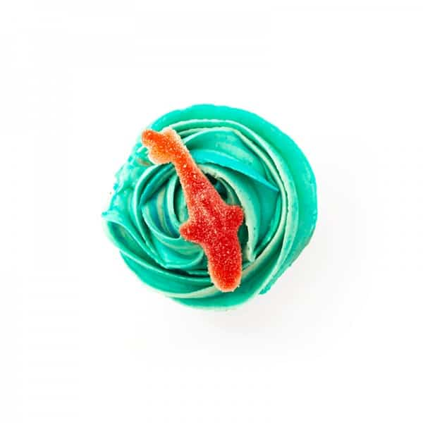 Cupcake - Baby Shark - cake - handmade - bakery - celebration - fresh - custom - unique - Niagara Park - NSW - Sydney - CakeAndPlate.com.au - © 2019