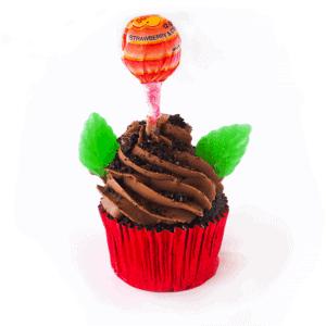 Cupcake - Flower Pot - cake - handmade - bakery - celebration - fresh - custom - unique - Niagara Park - NSW - Sydney - CakeAndPlate.com.au - © 2019