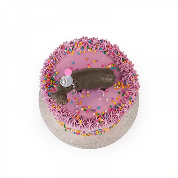 Party Animal - Quick-Cake - handmade - bakery - celebration - fresh - custom - unique - Niagara Park - NSW - Sydney - CakeAndPlate.com.au © 2020 - #2