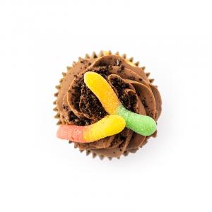 Cupcake - Fried Worms - cake - handmade - bakery - celebration - fresh - custom - unique - Niagara Park - NSW - Sydney - CakeAndPlate.com.au - © 2021